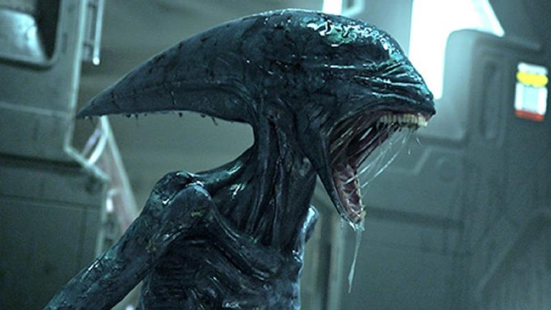 """Alien: Covenant"" - kadr z filmu"