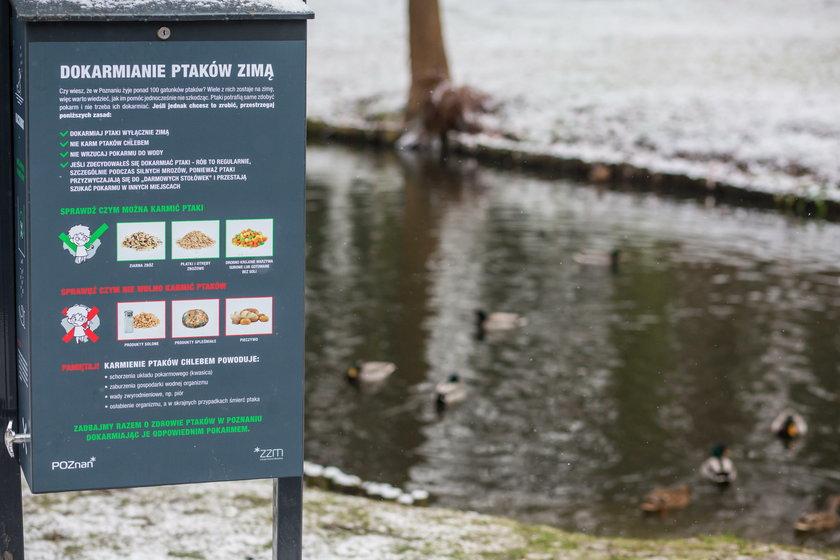 W parku Sołackim w  Poznaniu stanął kaczkomat
