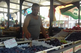 grožđe Bajloni