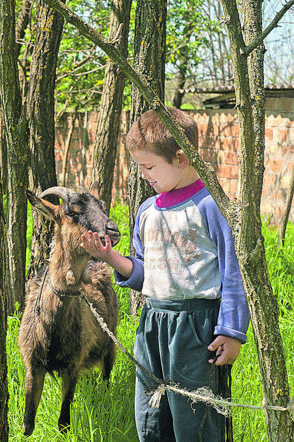 s mališanima je u novu kuću došla i kuja Azra, koja ih je svuda pratila, a sada imaju i kozu Milku, kojoj je Ivan dao ime po jednoj devojčici