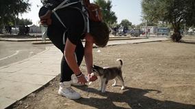 Przeszedł prawie 500 km, by uciec z Syrii. Nie potrafił opuścić swojeo psa