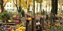 Wrocław - Jak poruszać się po cmentarzach 1 listopada. MAPY