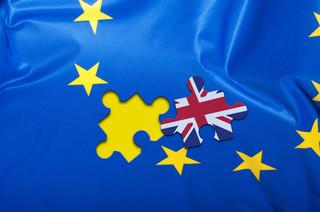 Brexit nie jest antidotum na ochronę granic UE
