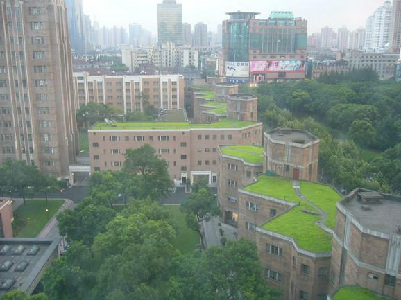 Beograd bi trebalo da sledi primere Njujorka, Londona i Singapura, ističu pejzažne arhitekte