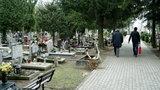 Cmentarz Łostowicki będzie większy!