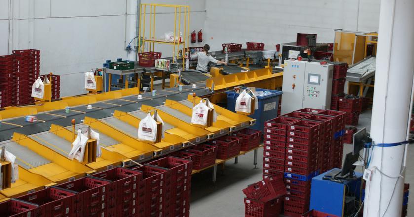 Co ciekawe, wykorzystawana przez Frisco taśma sortująca, to przerobiona na potrzeby supermarketu maszyna pocztowa. Oryginalnie służy ona do sortowania paczek i listów.