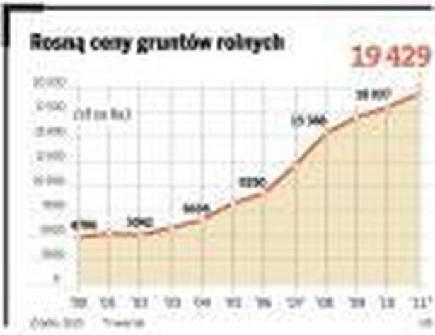 Rosną ceny gruntów rolnych