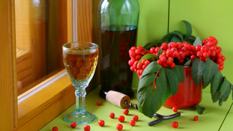 Wino z jarzębiny - vubaz/stock.adobe.com