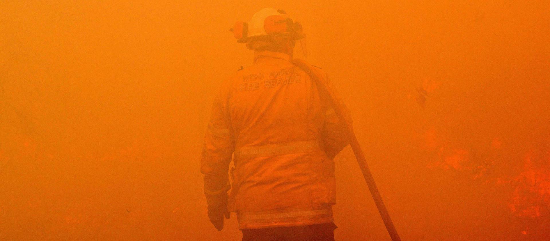 Pożary w Australii. Aplikacje pomagają walczyć z żywiołem, a laser ratować koale