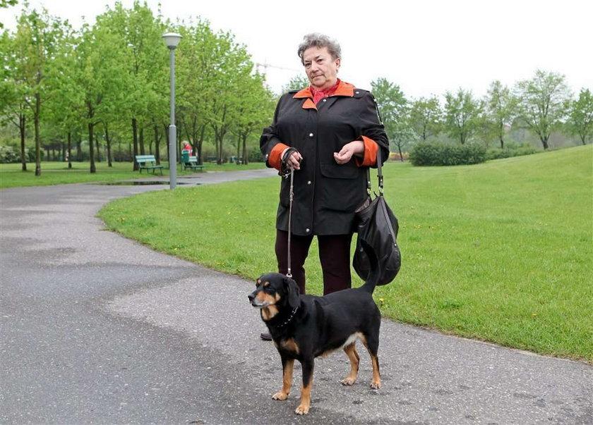 Zapłać za psa, bo przyjdzie komornik
