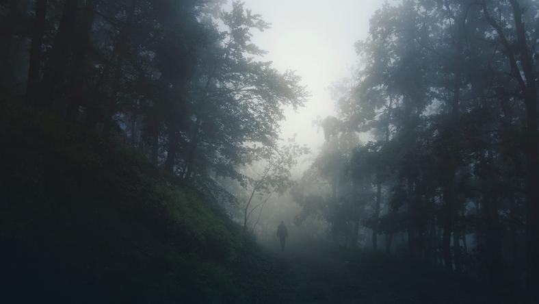 """Aokigahara - """"Las Samobójców"""""""