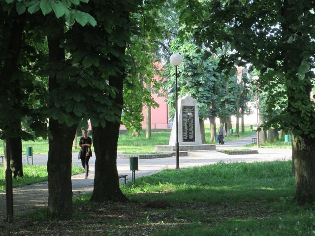 Vrane ne daju mira Lesničanima koji retko prolaze kroz park zbog ptica