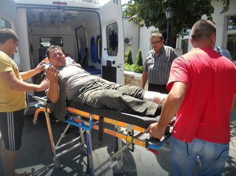 Maletić zadobio brone ubode osa po telu