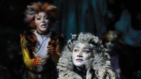 """""""Cats"""": kolejne pokazy w Warszawie"""