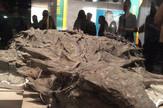 dinosaurus, ostaci, kanada, najbolje sačuvani
