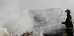 Płonęło sto hektarów zboża