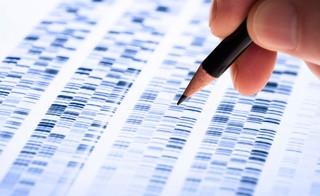 Badania DNA rzucą światło na dzieje dynastii Piastów