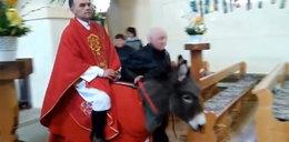 Ksiądz wjechał na ośle do kościoła. Internauci oburzeni