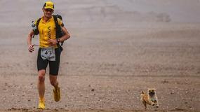 Biegał po pustyni Gobi. Wrócił z medalem i... pieskiem