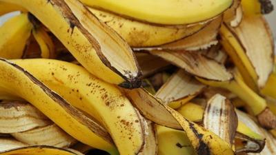 Want to stop wrinkles, skin aging? Try banana peel
