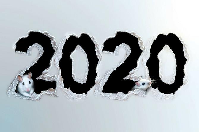 Kineski horoskop za 2020. očitaće lekciju OVIM ZNAKOVIMA: Evo šta će vam doneti GODINA PACOVA