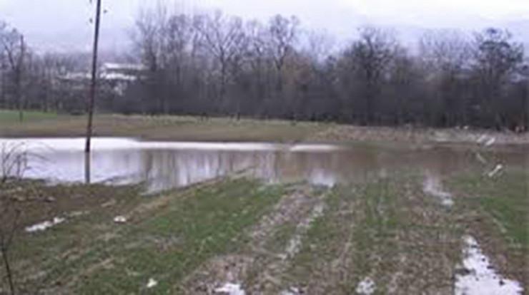 577830_vranje-poplave-foto-veselin-pesic-4