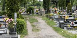 Przerażające odkrycie na cmentarzu: spalona dziecięca trumna i zniszczone groby