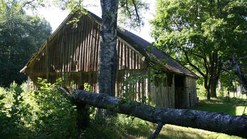 """Wierszalin, drewniany budynek w niedokończonym """"świętym mieście"""""""
