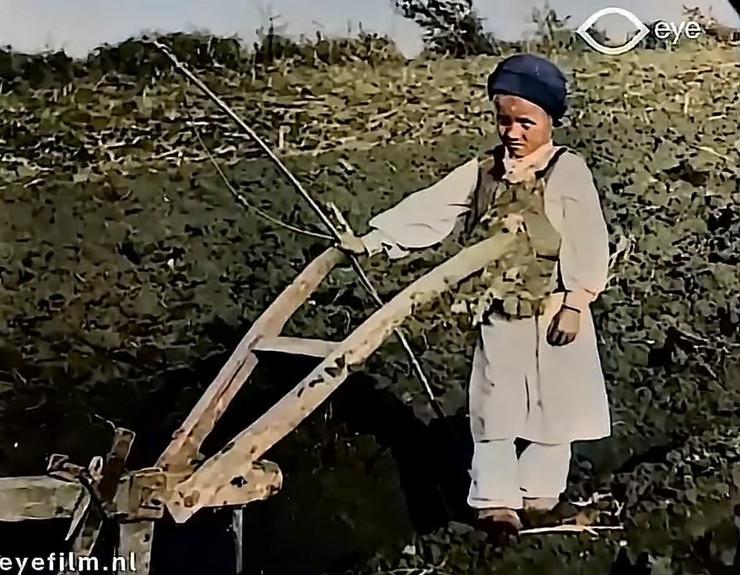 deca srbije 1920 godine