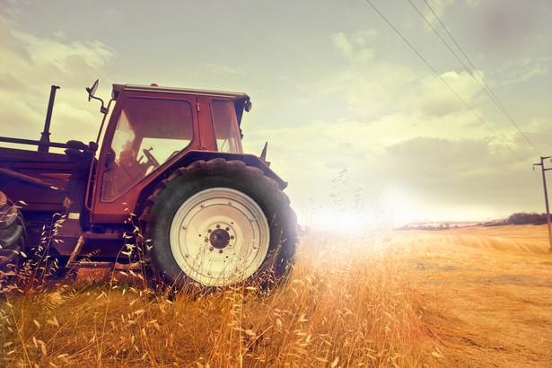 Rolnicy nie potrafią dbać o swoje. Ich polityczna skuteczność jest równa zeru