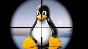 Nowe zagrożenie dla użytkowników Linuxa