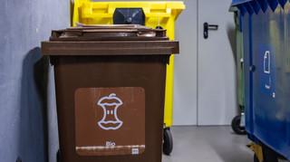 Niesegregowanie śmieci przez wspólnotę - pierwszy raz jest bez kary