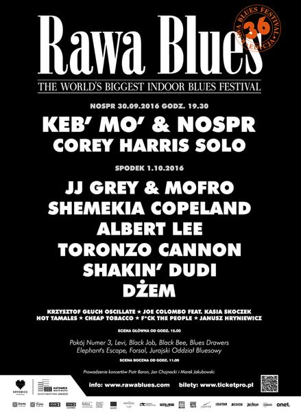 Rawa Blues Festival - plakat