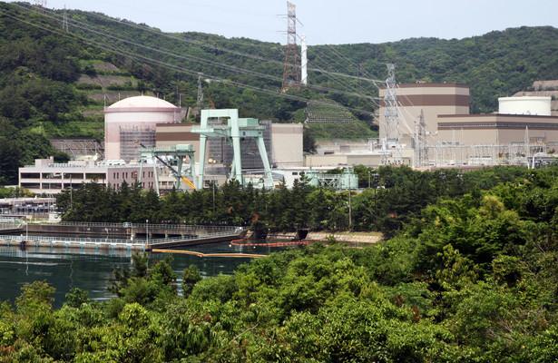 Kto uruchomi elektrownię ostatni będzie miał problemy ze znalezieniem chętnych na energię