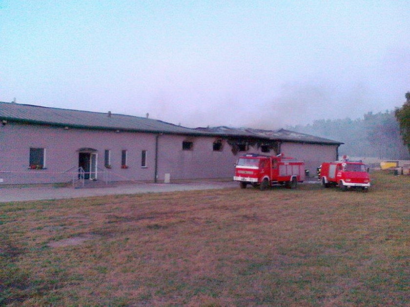 Gigantyczne straty po pożarze na fermie norek pod Pleszewem