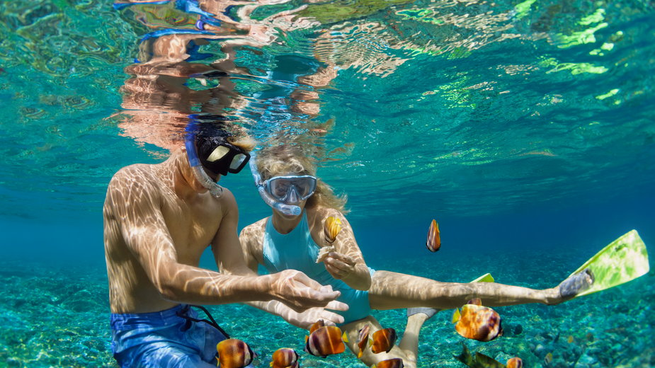 Naładuj baterie na wakacjach pod palmami