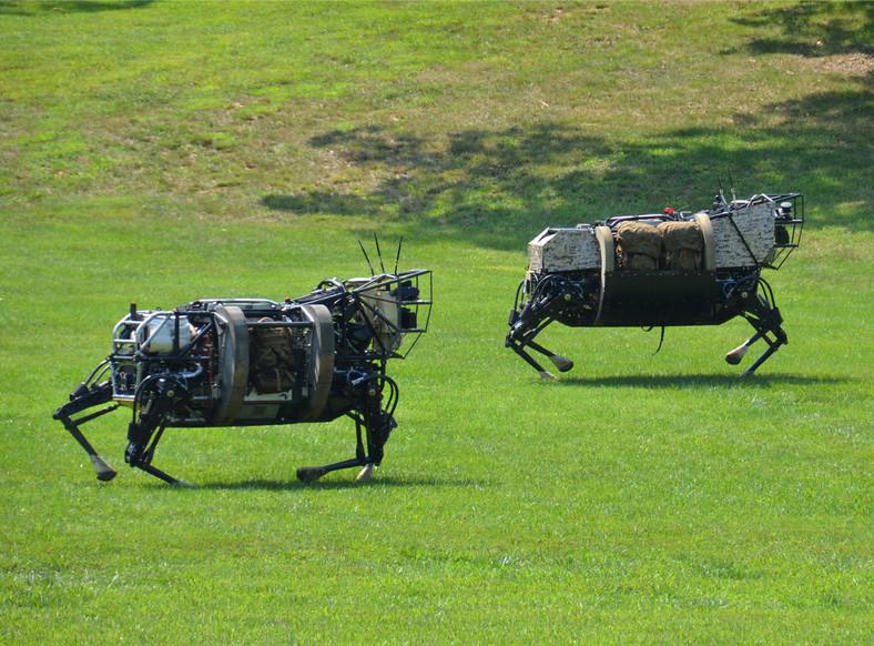 LS3 - muł transportujący