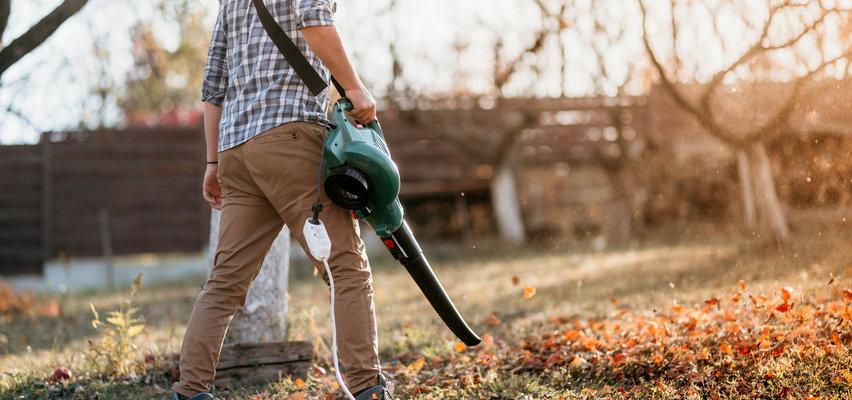 Elektryczne narzędzia do ogrodu, które przydadzą się jesienią!