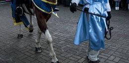 Koń króla stratował 4-letnie dziecko!