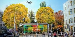 Stacja Łódź Śródmieście jak z Hollywood?