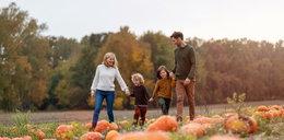 Rząd chce wzmocnić rodzinne gospodarstwa rolne