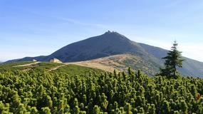 Alpy w Karkonoszach czyli jak ruszyć góry - list wydawcy Niezbędnika Turysty