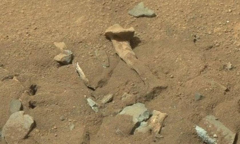 NASA odkryła kości Marsjan.
