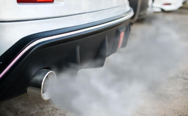Sprawa dotyczy afery spalinowej, nazywanej również dieselgate