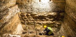 Odkryto konstrukcję grodu poznańskiego