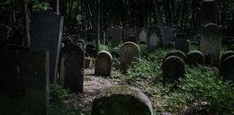 Niebezpieczne odkrycie na cmentarzu żydowskim w Warszawie