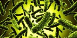 Te bakterie są gorsze niż rak!