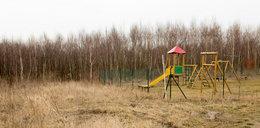 Wybudowali dzieciom plac zabaw w lesie
