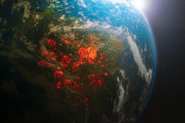 Ile wyniesie globalne PKB w 2021 roku? MFW podało prognozę