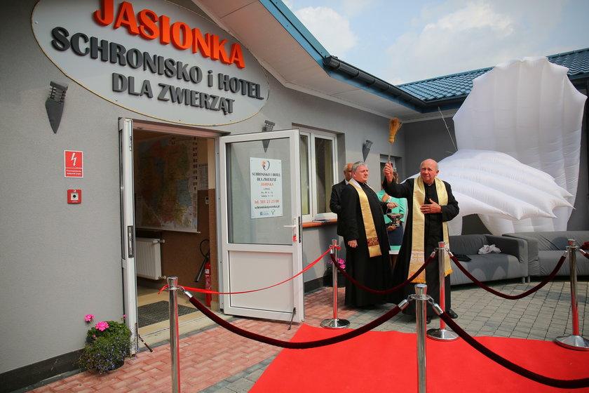 Schronisko dla zwierząt w Jasionce pod Zgierzem jak luksusowy hotel